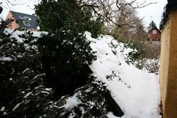 Blog 5marts Tung Sne