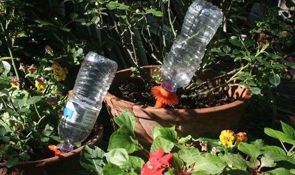 Havevanding, smart vanding af krukker