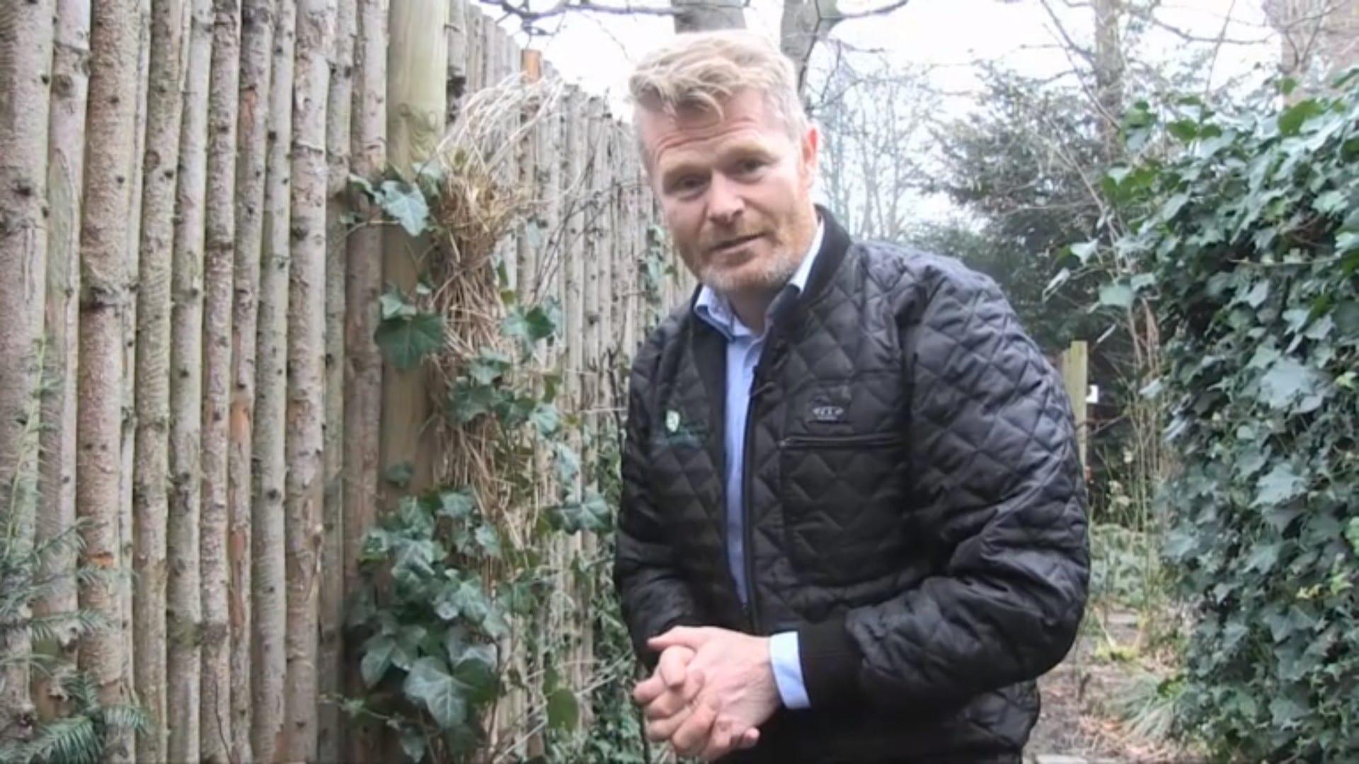 Kim Tang Barrodsplanter Hæk Stedsegrønne Danske Anlægsgartnere 2