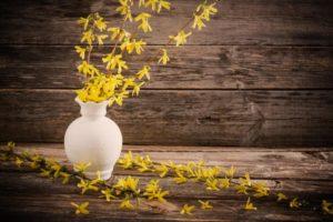 Blomstrende Drevne Grene